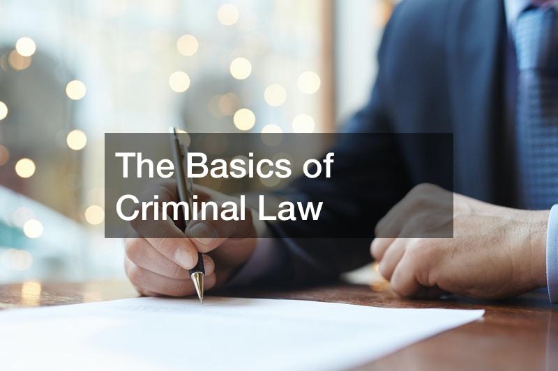 The Basics of Criminal Law